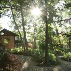 Rotary Botanical Gardens Japanese Garden