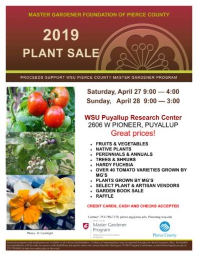 Pierce County Master Gardener Foundation Plant Sale Hardy Fern Foundation